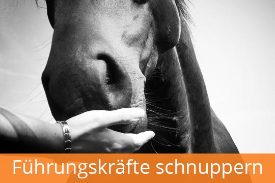 fuehrungskraefte_schnuppern